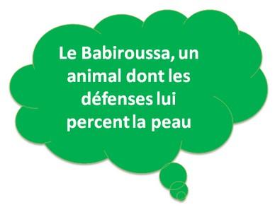 babiroussa